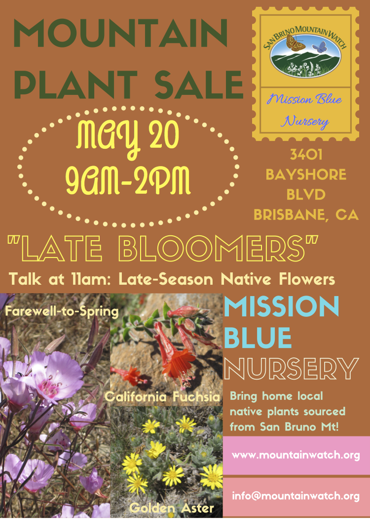 Mission Blue Native Plant Sale Late Bloomer Talk Set For May