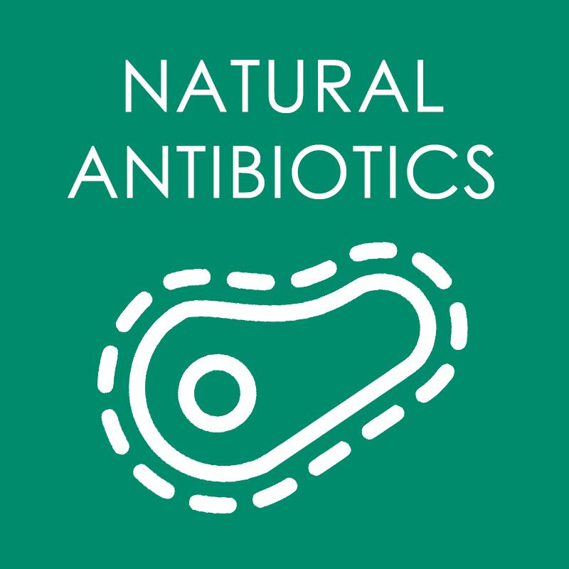 Natural Antibiotics
