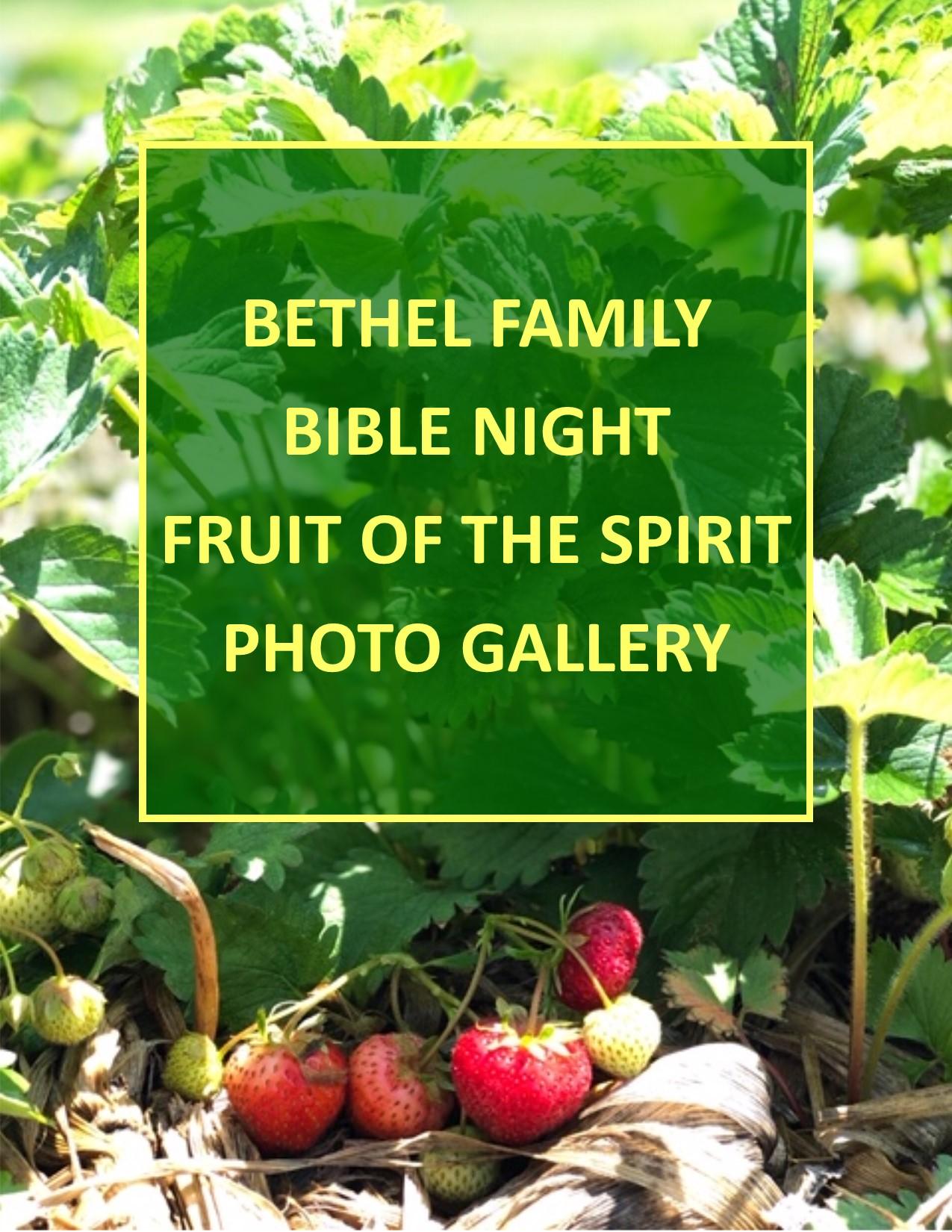 BFBN photo gallery