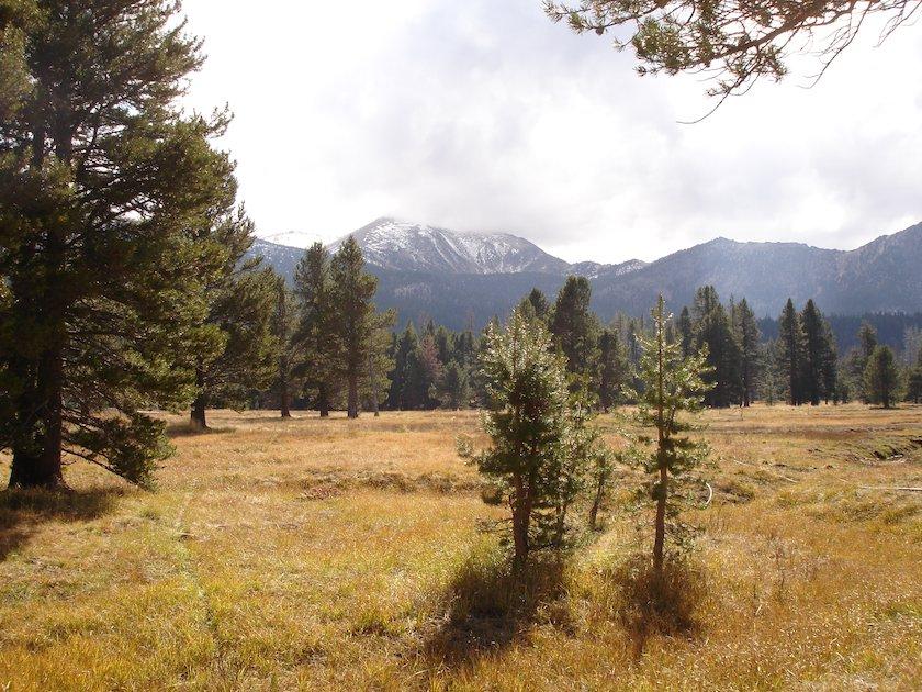 High-Meadow-Mountain-Bike-Tahoe