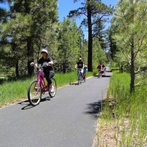 cruiser-bike-rides-south-tahoe