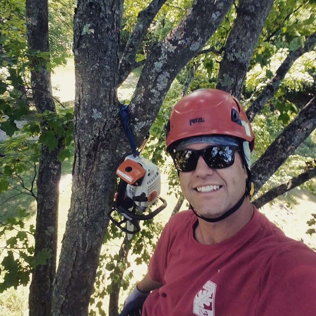 justin maguire mountain dog tree care