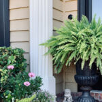 Entry - Beautiful ferns and Foo Dogs provide beauty and protection at a home's entry.