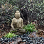 Meditation Garden Feng Shui - Create a space to reflect, relax and recharge in the Northeast corner of your garden. If possible, have your Buddha face the morning sun.