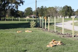 building a fence posts