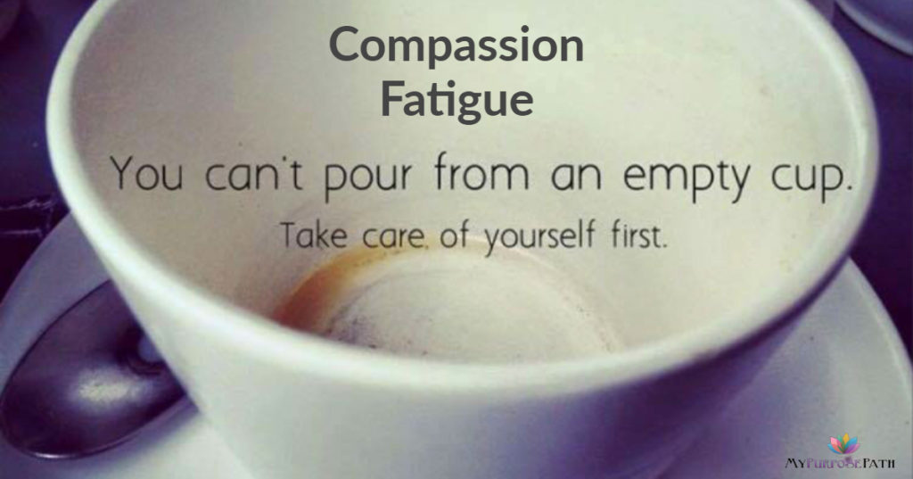 COMPASSION FATIGUE In Animal Welfare & Veterinary Medicine