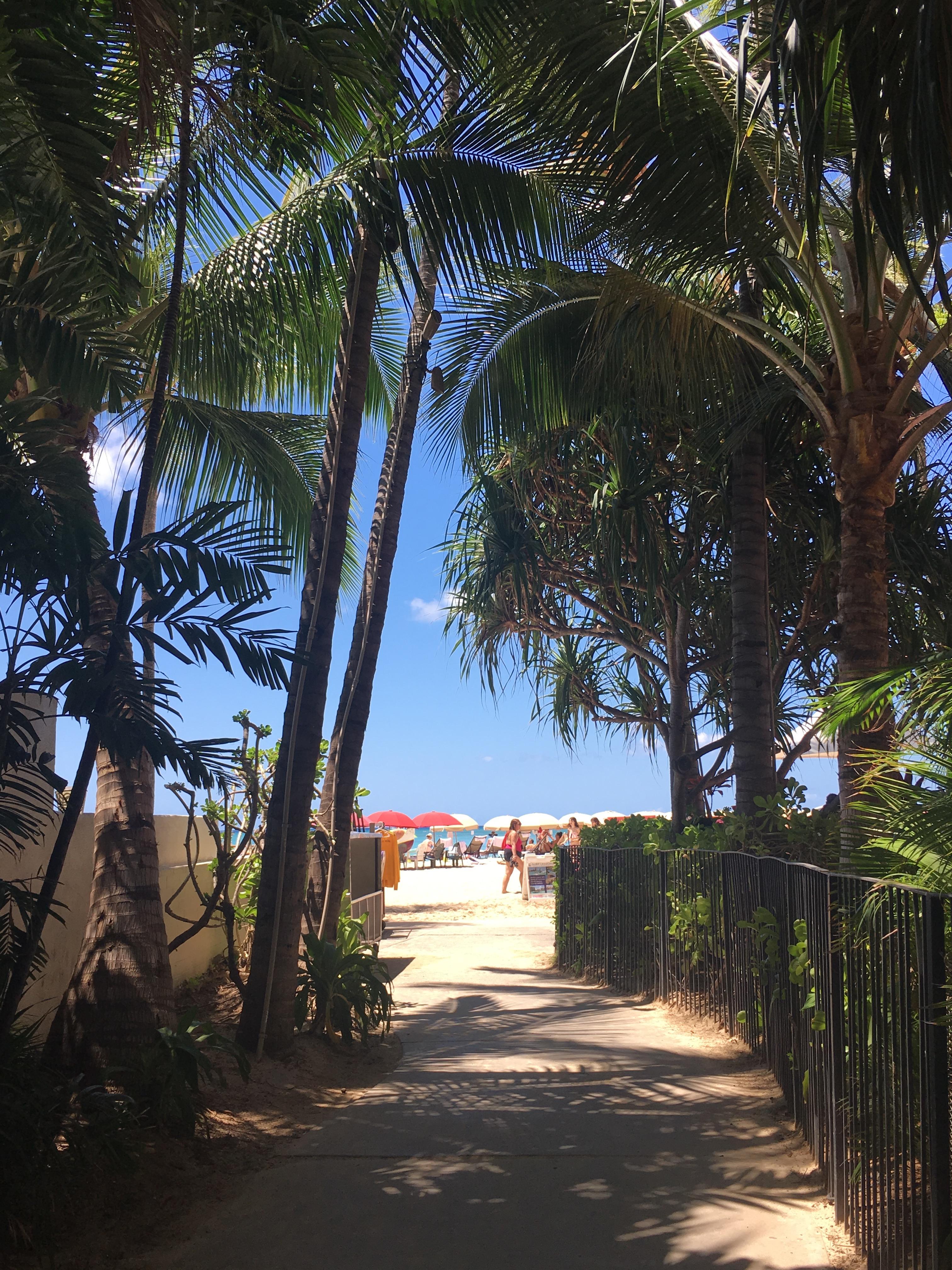 Quarterly Travel Update: Chicago, Punta Cana and Honolulu