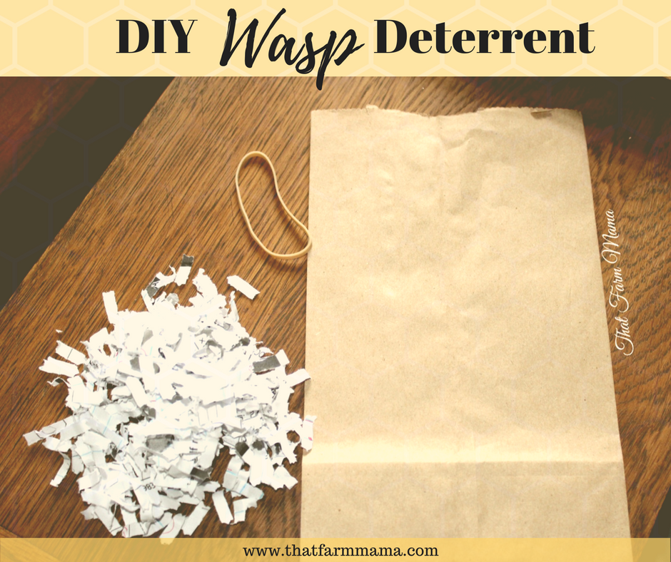 DIY Wasp Deterrent