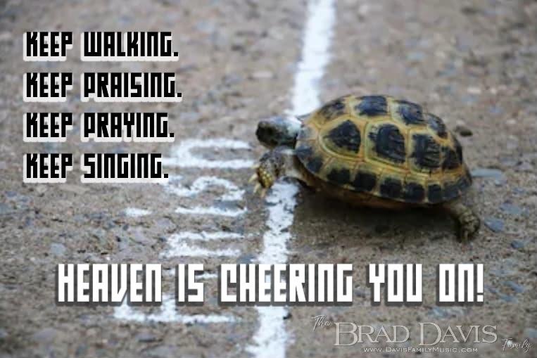 Turtle-CHeering2