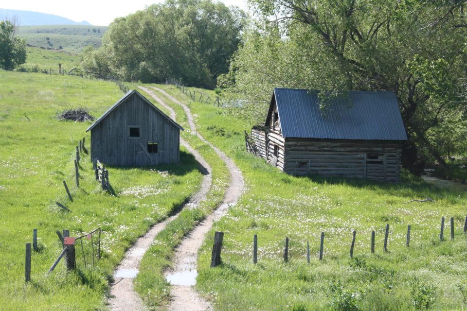 homestead