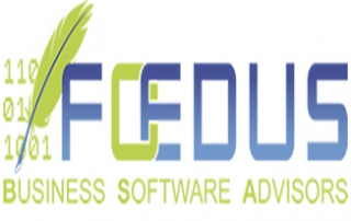 Foedus business software advisors