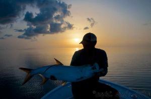 Tarpon fishing with Capt. Kyle Kelso