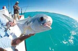 Marquesas Keys Permit Fishing