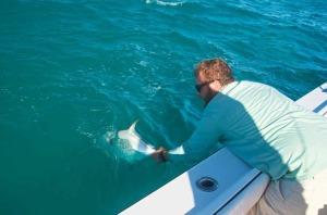 Releasing a permit in Key West
