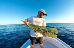 Fishing for mahi mahi in Key West