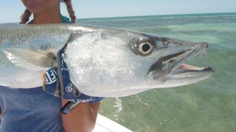 Barracuda Fishing in Key West