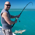 Lemon shark fishing in Key West