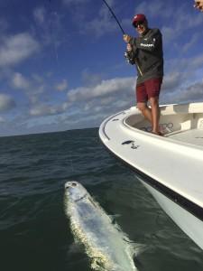 Tarpon caught in Key West