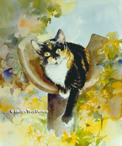 'Mr. Cat' by Todd-Daniels | Woodsong Institute