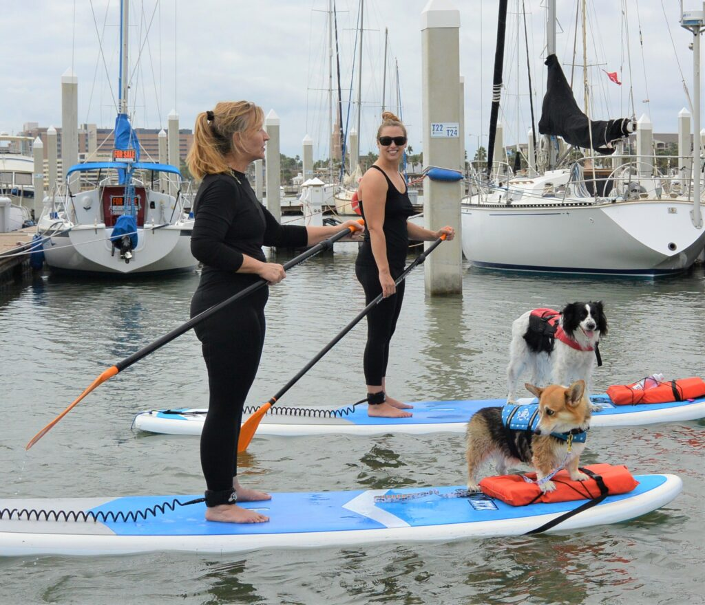 SUP with your Pup at Water Dog