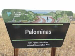 Palominas AZ 01
