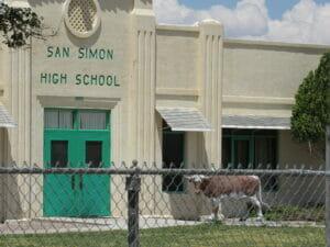 San Simon AZ 09