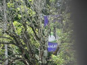 Oak Hill WV 15