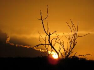 Cochise County AZ 12