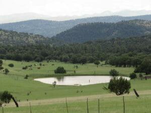 Greenlee County AZ 02