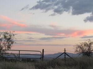 Patagonia AZ 39