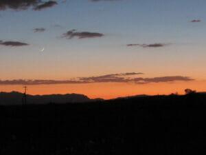 Patagonia AZ 41