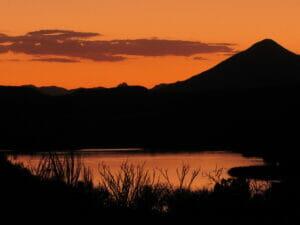 Patagonia AZ 42