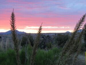 Santa Cruz County AZ 04