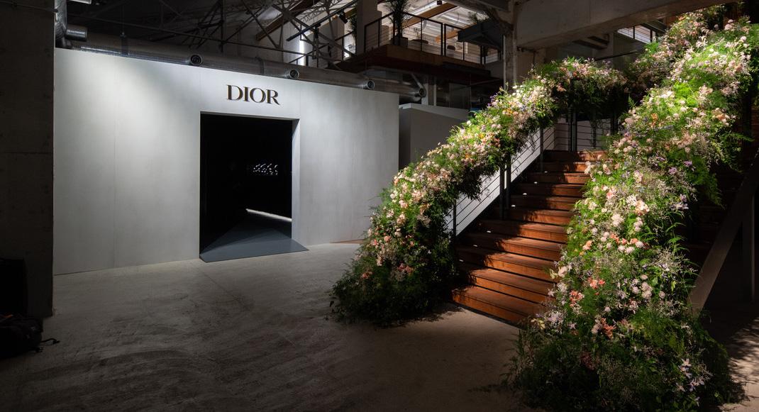 Dior_Crop