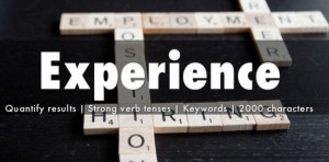 experience linkedin