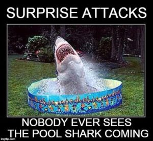 chris-steadman-ntrance-hypnotherapy-blenheim-irrational-fear-sharks-pool