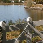 Simmons Preserve Stonington CT