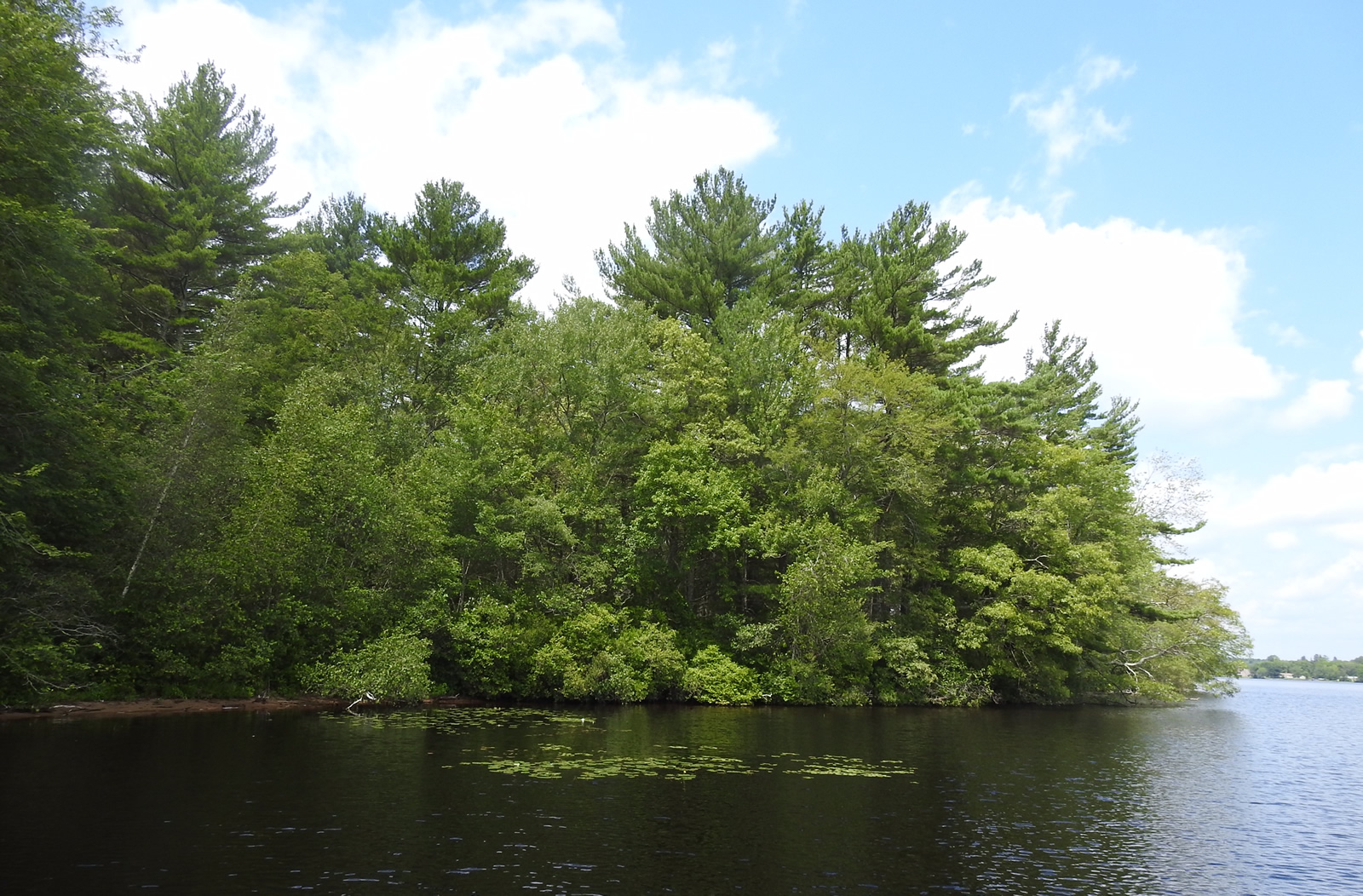 Avalonia Land Conservancy Receives Griswold Land Donation