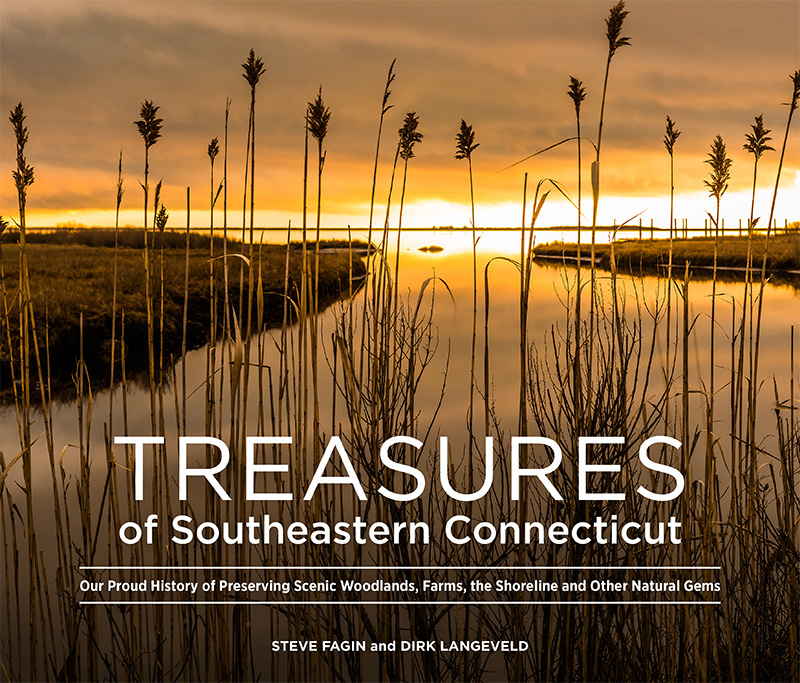 Treasures SECT Cover Flat Final