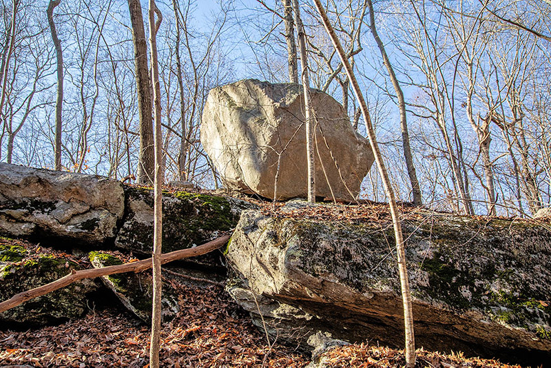 Avalonia Land Conservancy Aquires 41.5 Acres In Groton