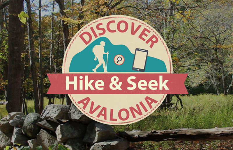 Hike & Seek: Bringing Nature Closer During This Time Of Social Distancing