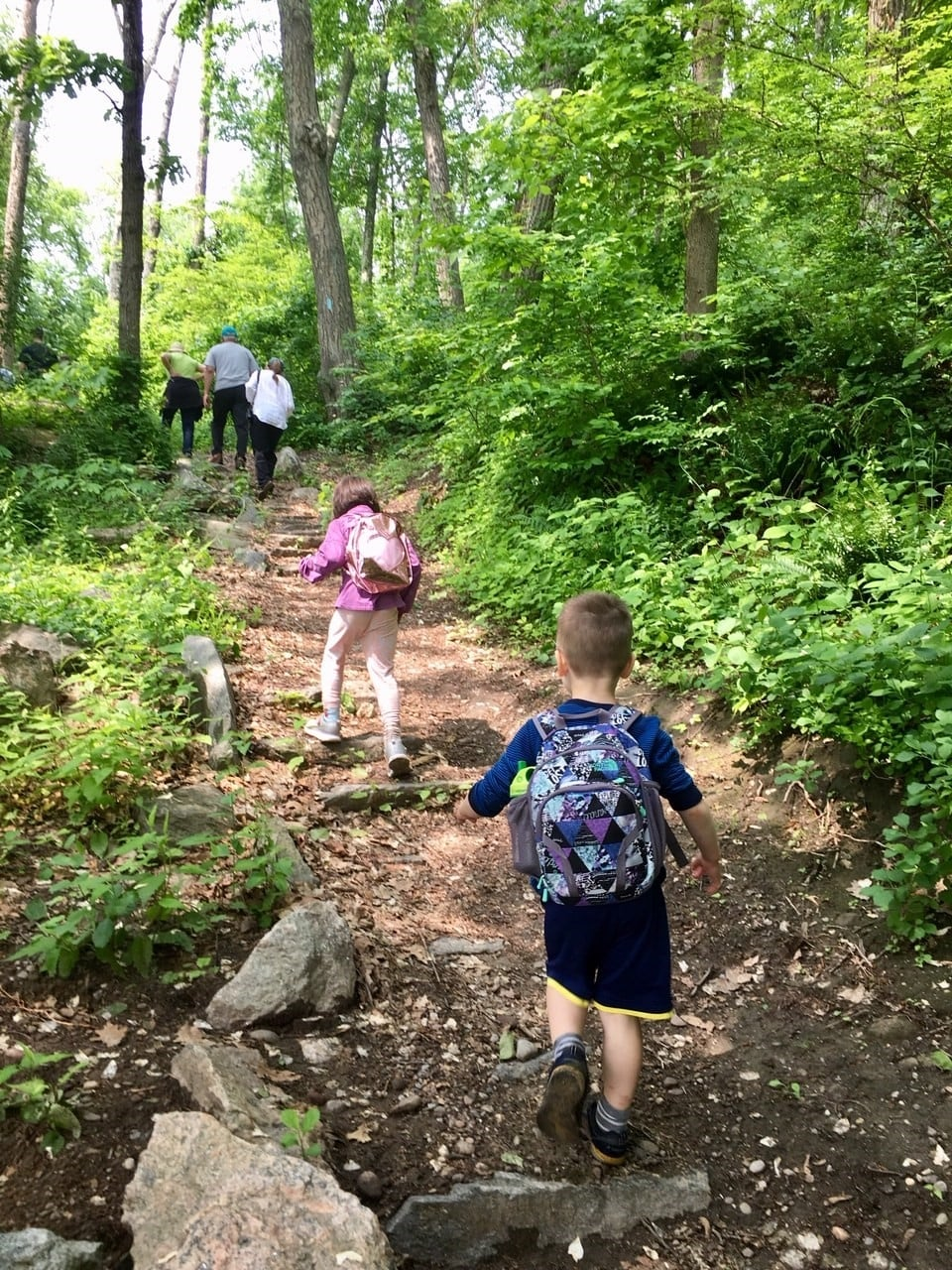 Are YOU Registered For The Great Avalonia Trail Trek?