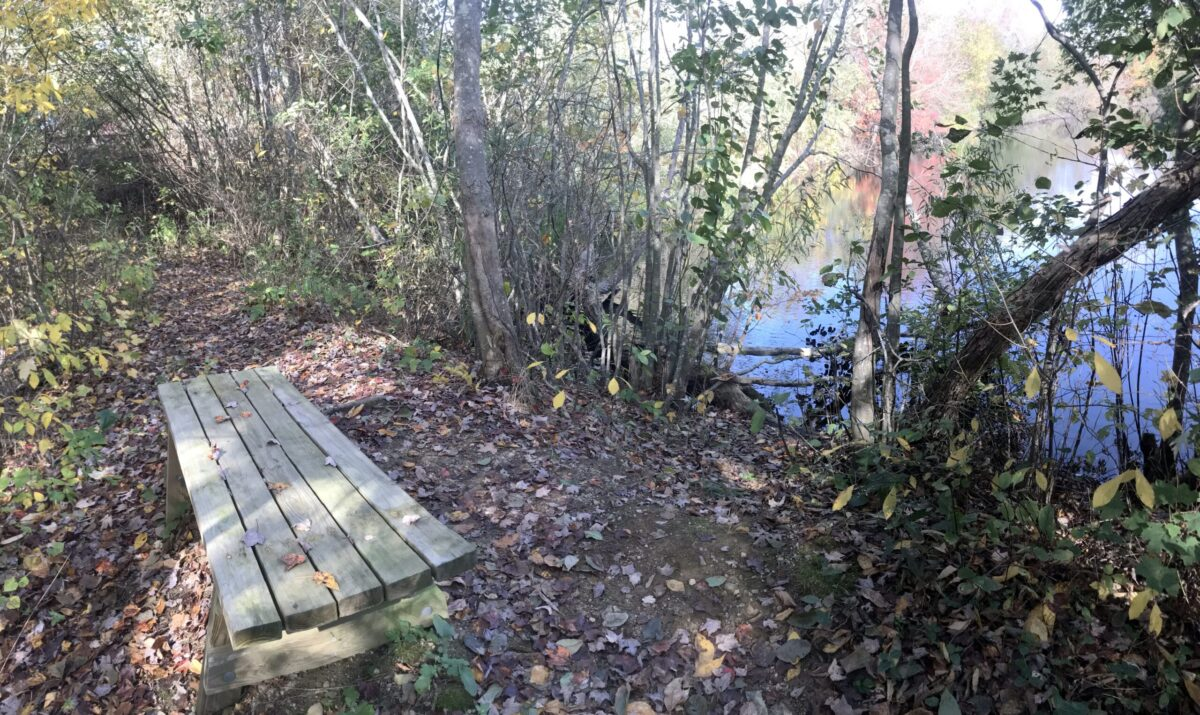 Avalonia Trail Finder Review: Pequotsepos Brook Preserve