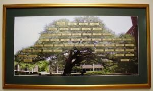 Legacy tree