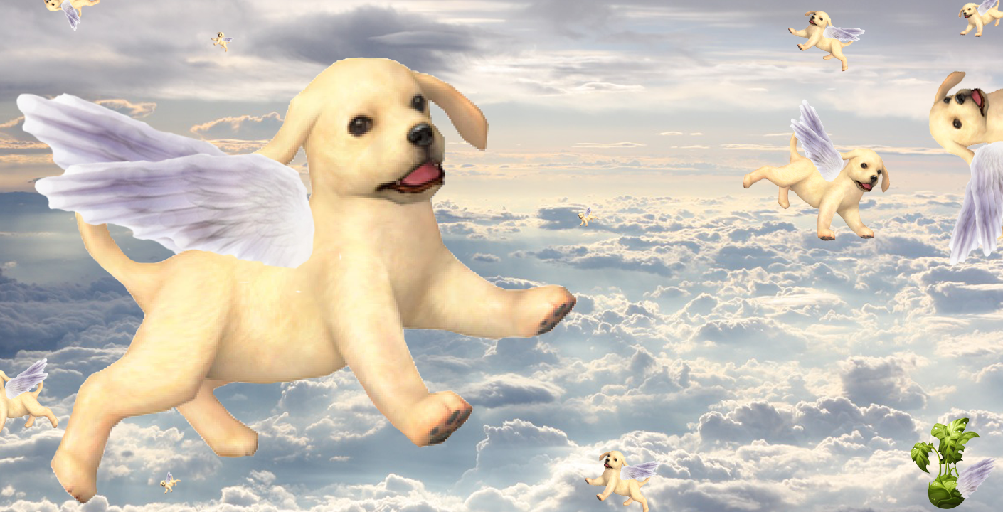 What Happens to Nintendogs After Several Years?