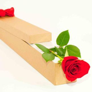 Single red rose, delivered in a presentation box.