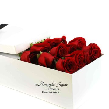Dozen Red Roses in a presentation box.