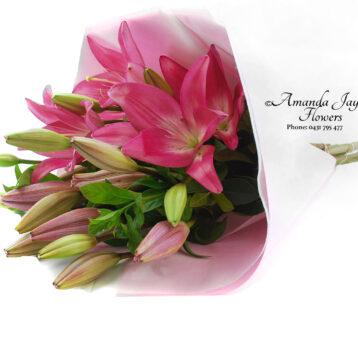 Blush Lilies