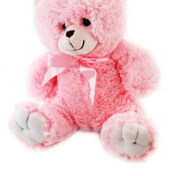 Little Ted Bear - pink Teddy Bear
