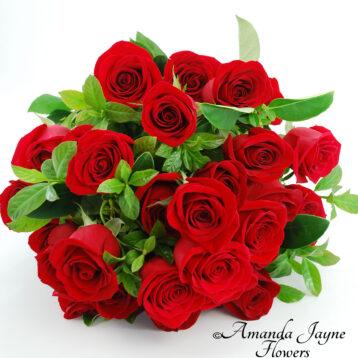 Noosa Dozen Red Roses